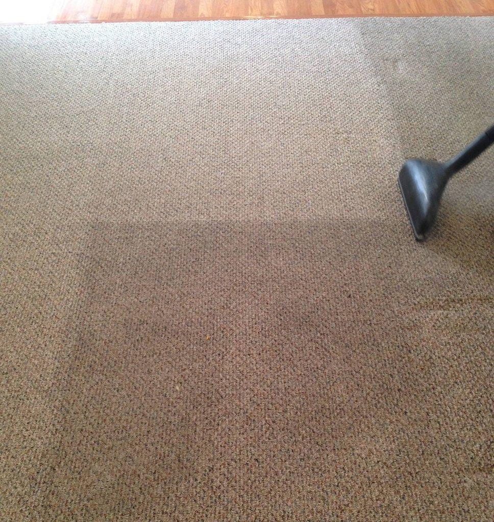 Carpet Cleaning in El Rio, California (3522)
