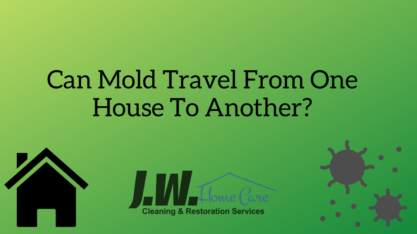 Can Mold Travel From One House To Another?