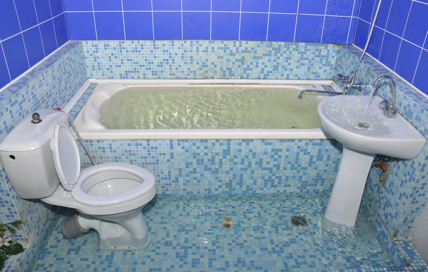 What to Do if My Toilet Overflows?